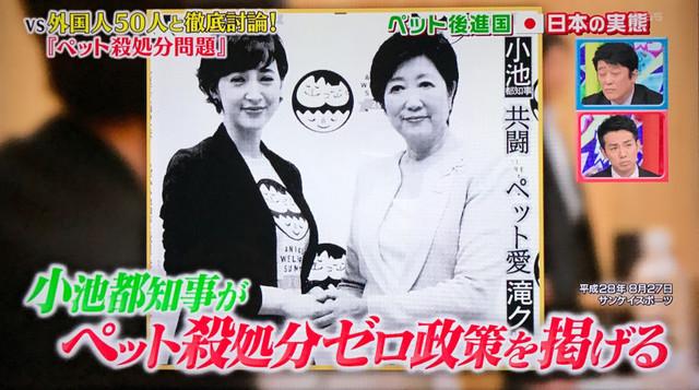 小池 殺処分ゼロ.jpg